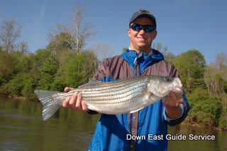 North carolina fishing guide striped bass fishing for Nc wildlife fishing license